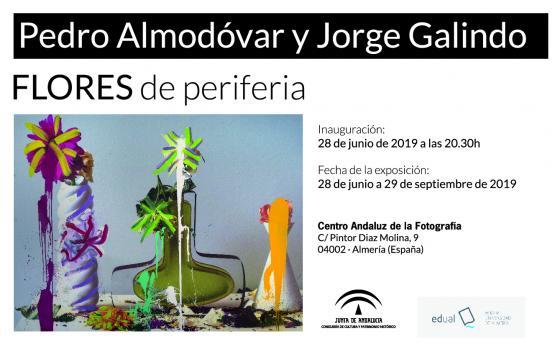 Exposición de Pedro Almodóvar y Jorge Galindo