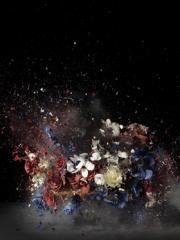 Fotografía de un bodegón floral en el momento de su estallido.