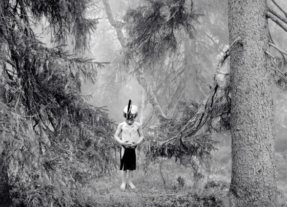 Copyright. Ritva Kovalainen. Suave se mece el pino del bosque.