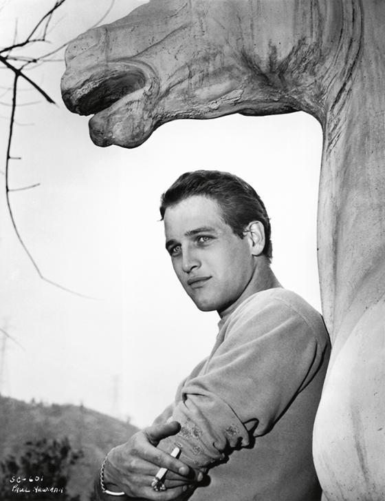 Paul Newman en Hollywood Icons