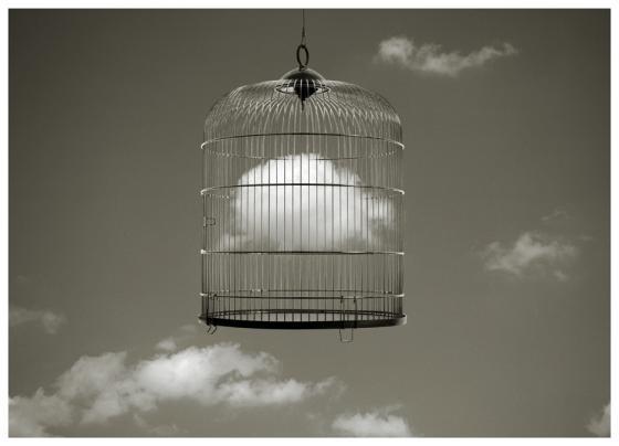 Jaula de pájaro
